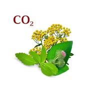 Комплекс СО2 экстрактов Регенерирующий
